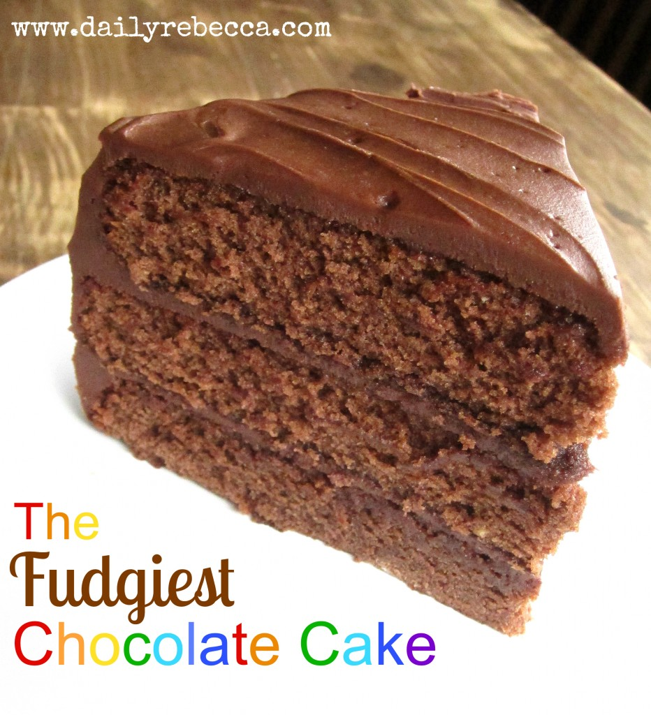 the fudgiest chocolate cake