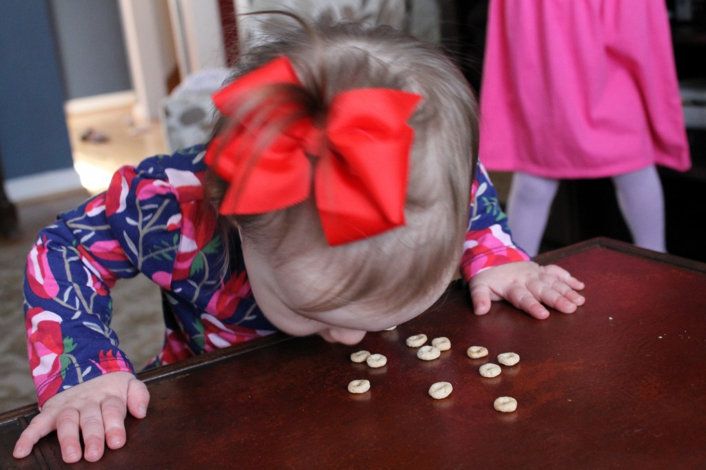 avery face planting into cheerios