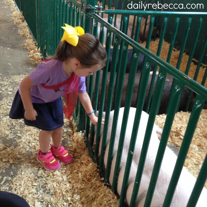 grace petting pig