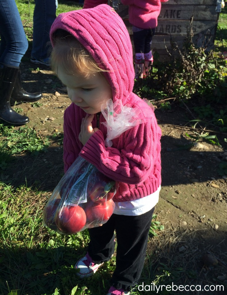 avery with apples